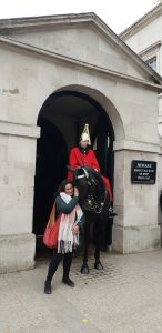 The Queen's guard's horse