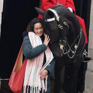 Horse at Horse Guard Parade