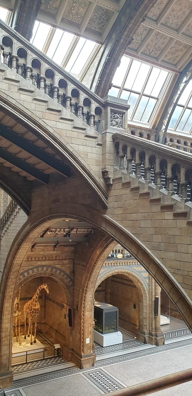 Hinzte Hall, the Natural History Museum