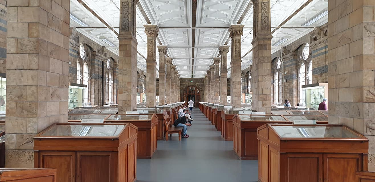 The Vault, the Natural History Museum
